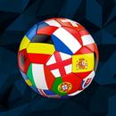 International Football Simulator APK Android