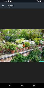 Modern Garden Pots Design Ideas screenshot 13