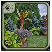 Tropical Garden Plants Design Ideas icon
