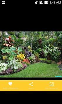 Tropical Garden Plants Design Ideas screenshot 8