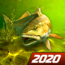 My Fishing World - Realistic fishing APK Android