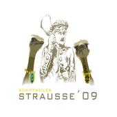 Strauße 09 Schiffweiler icon