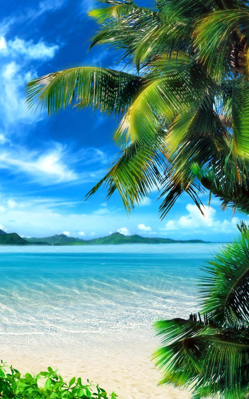Tropical Beach Live Wallpaper For Android Apk Download