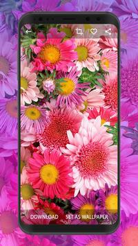 Flower Wallpapers | Ultra HD Quality poster