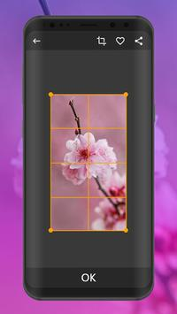 Flower Wallpapers | Ultra HD Quality screenshot 1