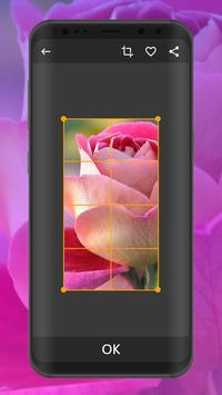 Flower Wallpapers | Ultra HD Quality screenshot 4