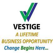 Vestige Business Presentation icon