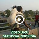 Video Lucu Status WA APK Android