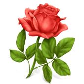 🌹🌺 WAStickerApps - Цветы иконка