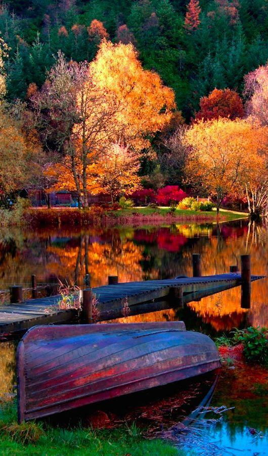 Autumn Wallpapers Hd For Android Apk Download