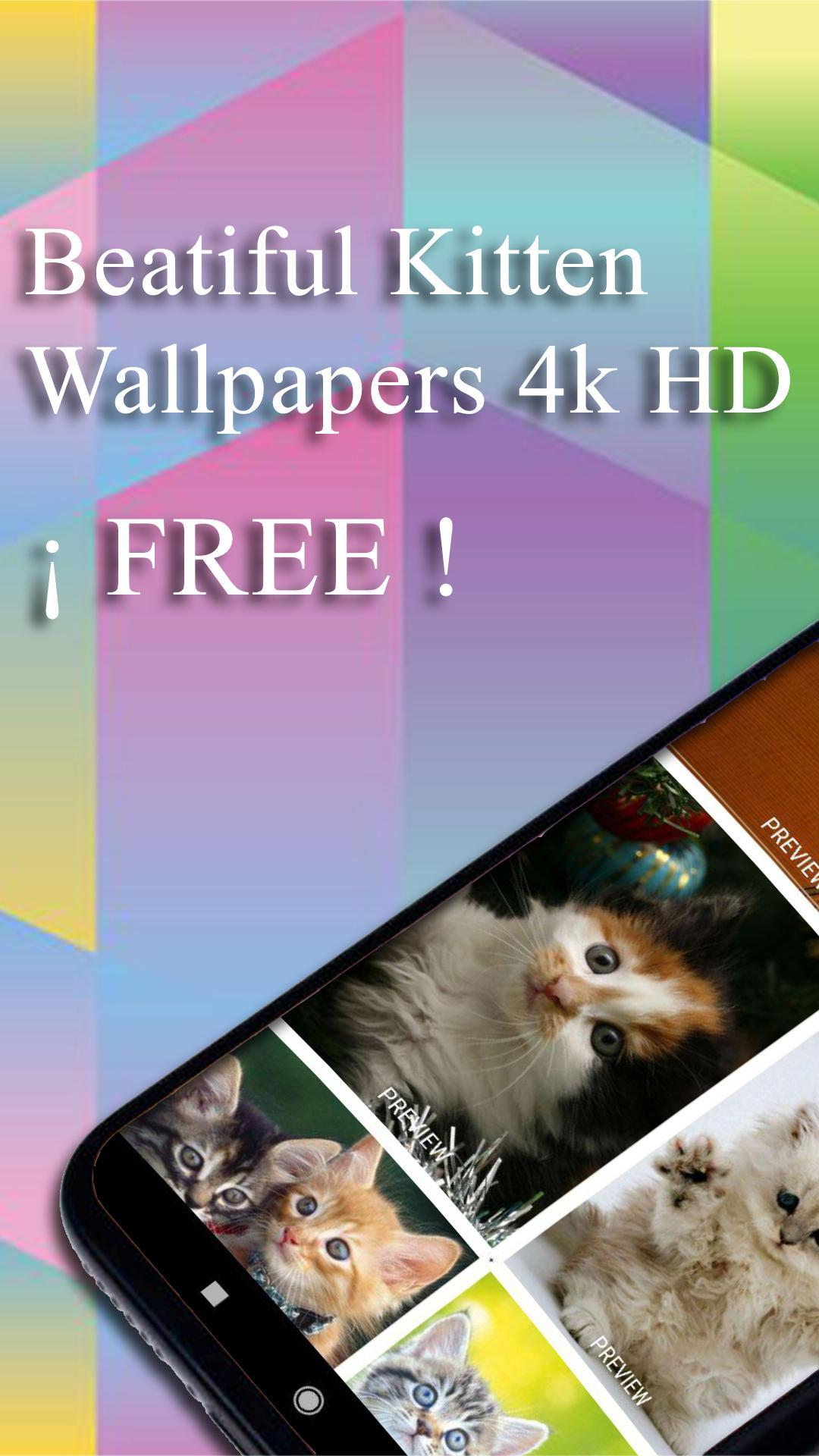 Kittens Wallpaper 4k Hd Fondos De Pantalla Gatos For Android Apk Download