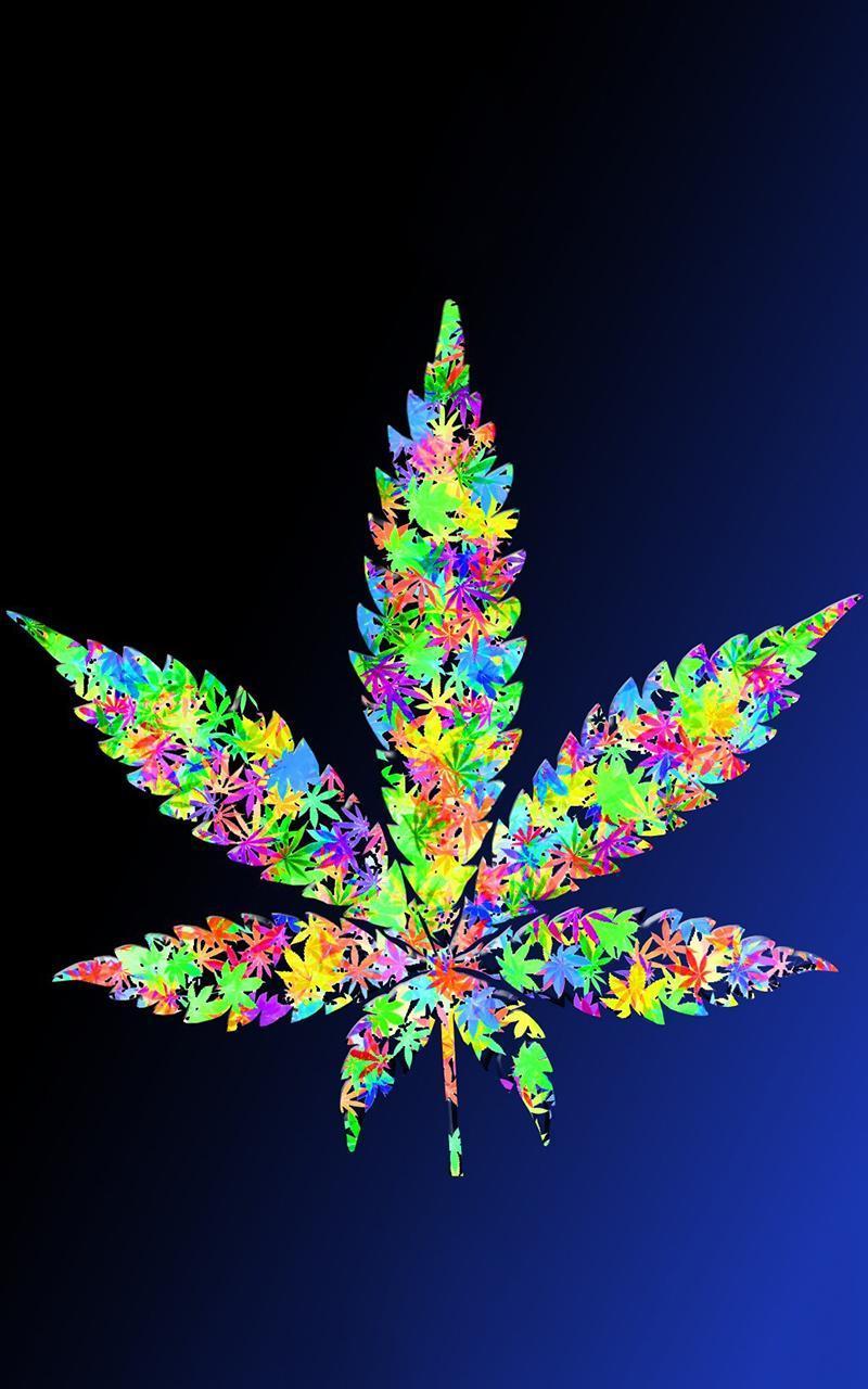 фото марихуаны в горшке