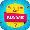 What is in Your Name & Your Name Facts 圖標