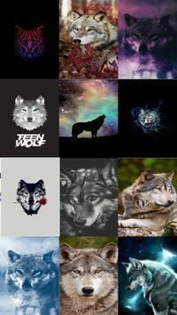 Wolf Wallpaper gönderen