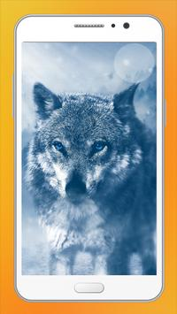 Wolf HD Wallpapers screenshot 13