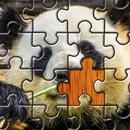 APK Jigsaw Puzzle Animals