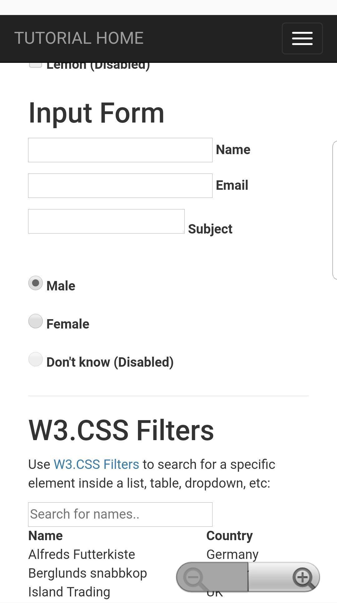 W3schools Payment Form