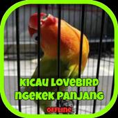 Lovebird Ngekek Panjang icon