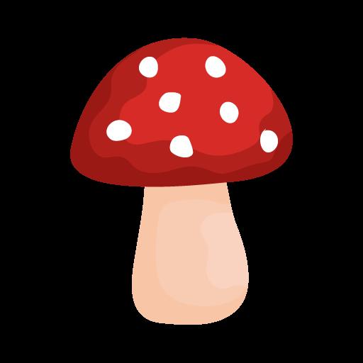 Shroomify - USA Mushroom Identification