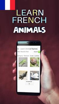Learn Animals in French poster