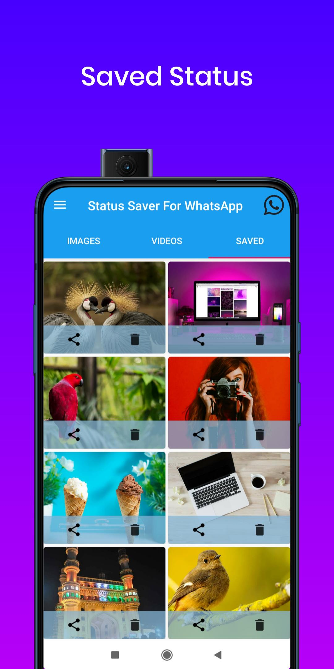 Status Saver For Whatsapp Wa Business For Android Apk
