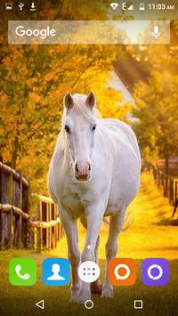 White Horse Hd Wallpapers screenshot 1