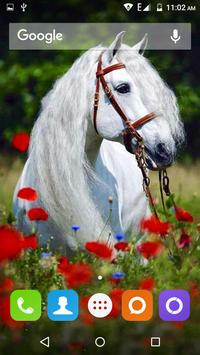 White Horse Hd Wallpapers screenshot 21