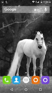 White Horse Hd Wallpapers screenshot 7
