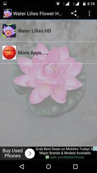 Water Lilies Flower Wallpaper poster