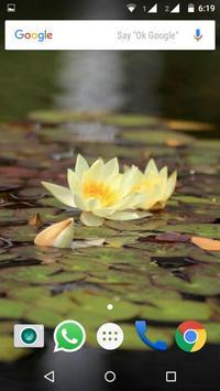Water Lilies Flower Wallpaper screenshot 1