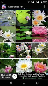 Water Lilies Flower Wallpaper screenshot 2