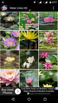 Water Lilies Flower Wallpaper screenshot 4