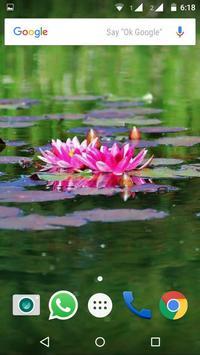 Water Lilies Flower Wallpaper screenshot 5