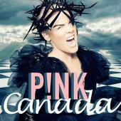P!nk - Just Give Me A Reason icon