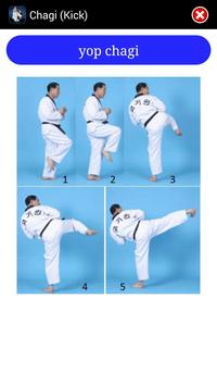 Taekwondo WTF screenshot 5