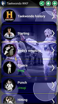 Taekwondo WTF poster