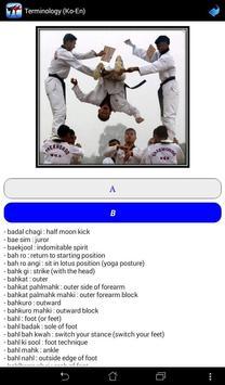 Taekwondo WTF screenshot 10