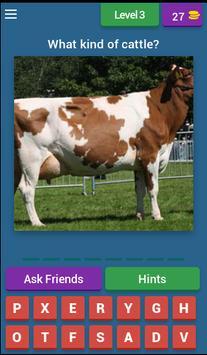Guess Little Cattle screenshot 2