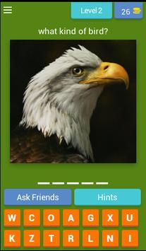 Guess Little Bird poster