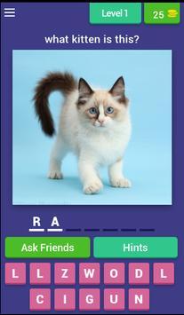 Guess Little Kitten screenshot 1
