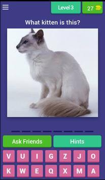Guess Little Kitten screenshot 2