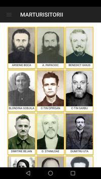 Marturisitorii poster