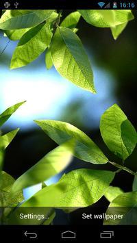 Fresh Leaves captura de pantalla 7