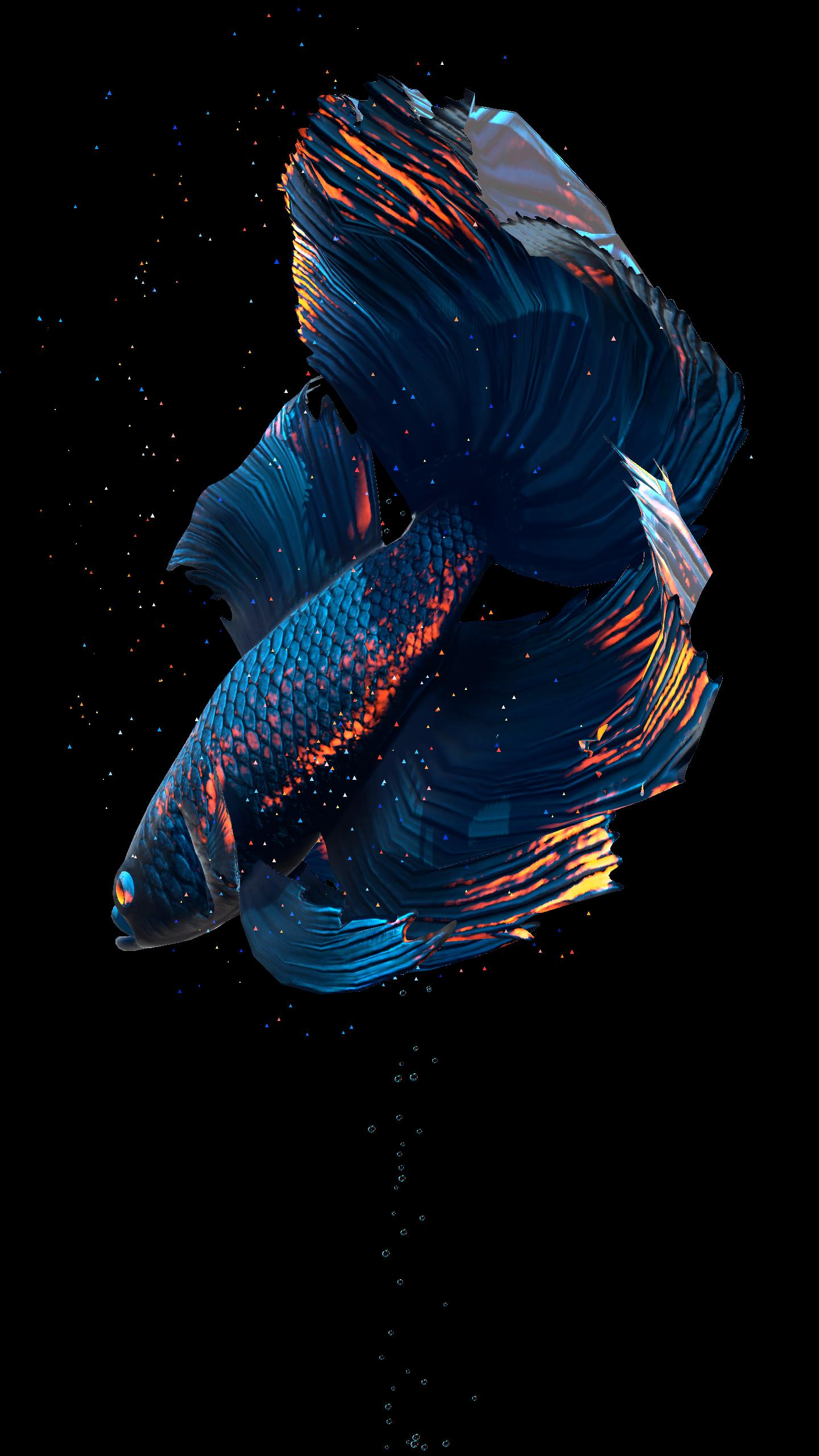 Betta Fish Live Wallpaper Free For Android Apk Download