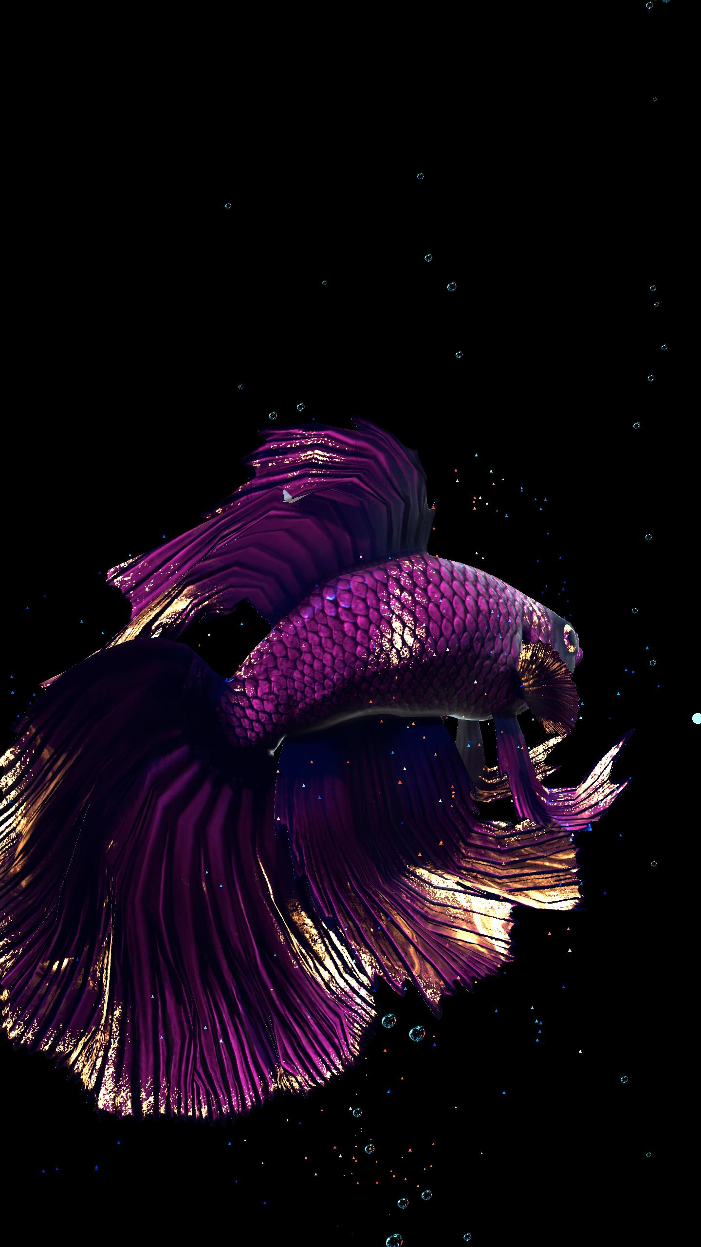 Betta Fish Live Wallpaper FREE for Android - APK Download