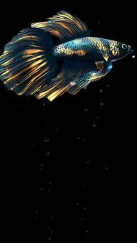 Betta Fish Live Wallpaper FREE स्क्रीनशॉट 17