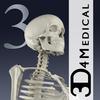 Essential Skeleton 3 아이콘