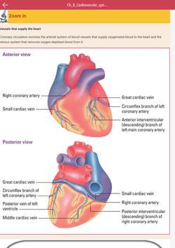 Anatomy & Physiology MIE NCLEX screenshot 11