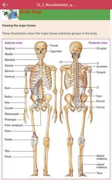 Anatomy & Physiology MIE NCLEX screenshot 19