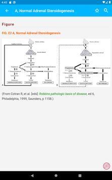 Clinical Constellation screenshot 19